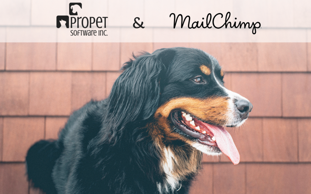 Engage Your Clients Through MailChimp Email Marketing