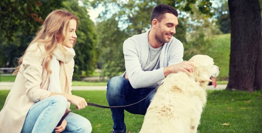 5 Reasons Why Repeat Customers Are Important For Your Pet Business
