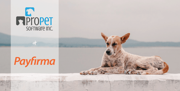 PayFirma For ProPet: Lowest Industry Rates and Simplified Online Payments